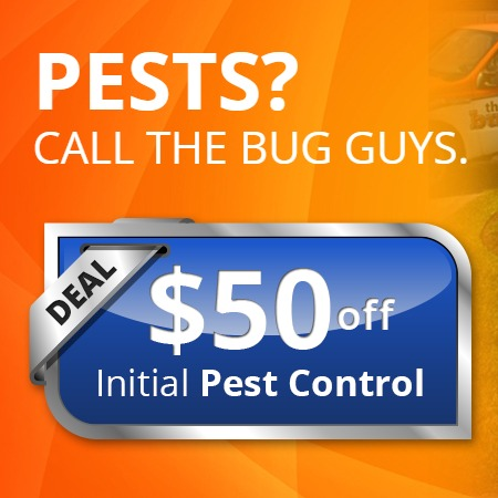 The Bug Guys Pest Control