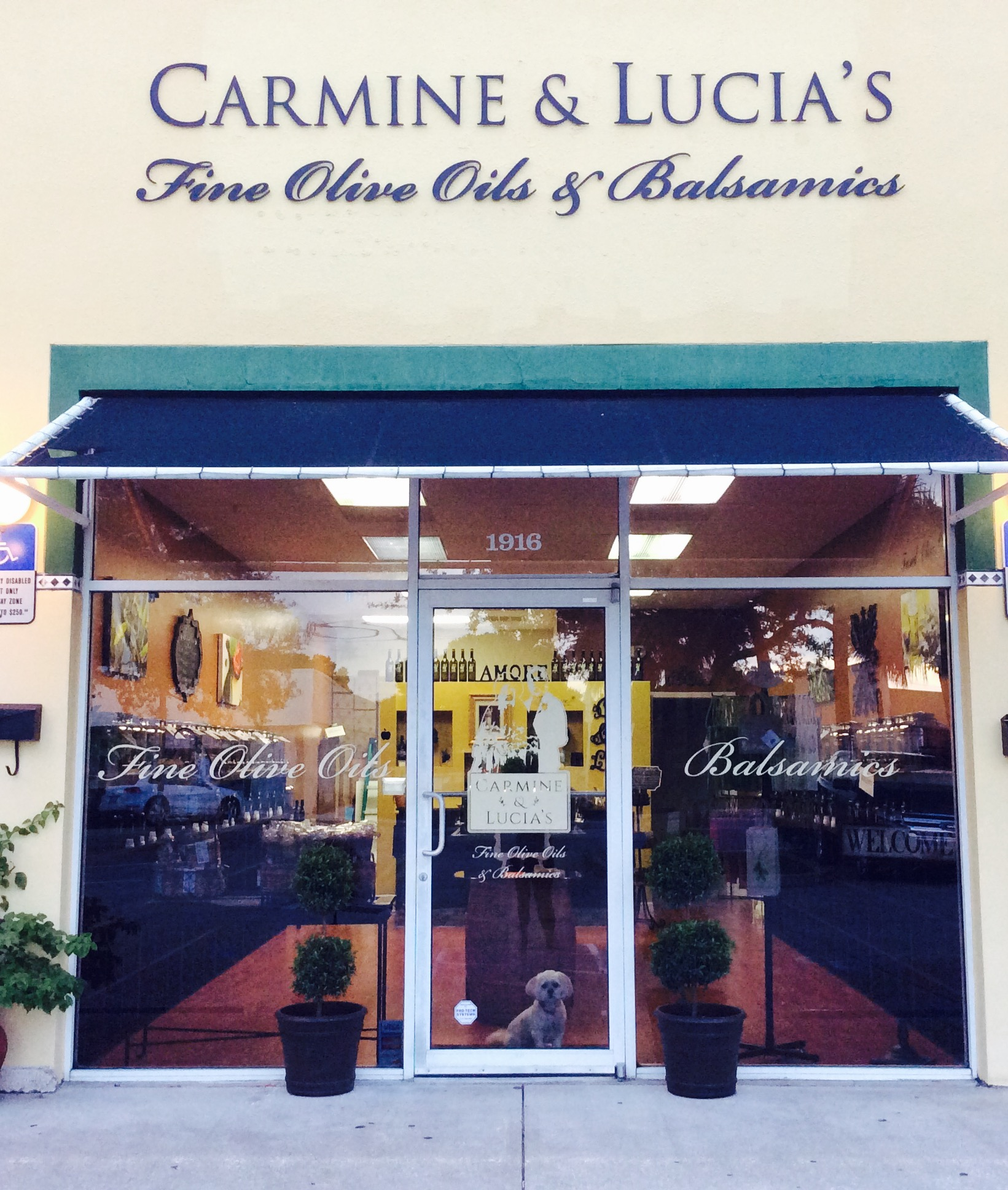 Carmine and Lucia's Fine Olive Oil and Balsamics