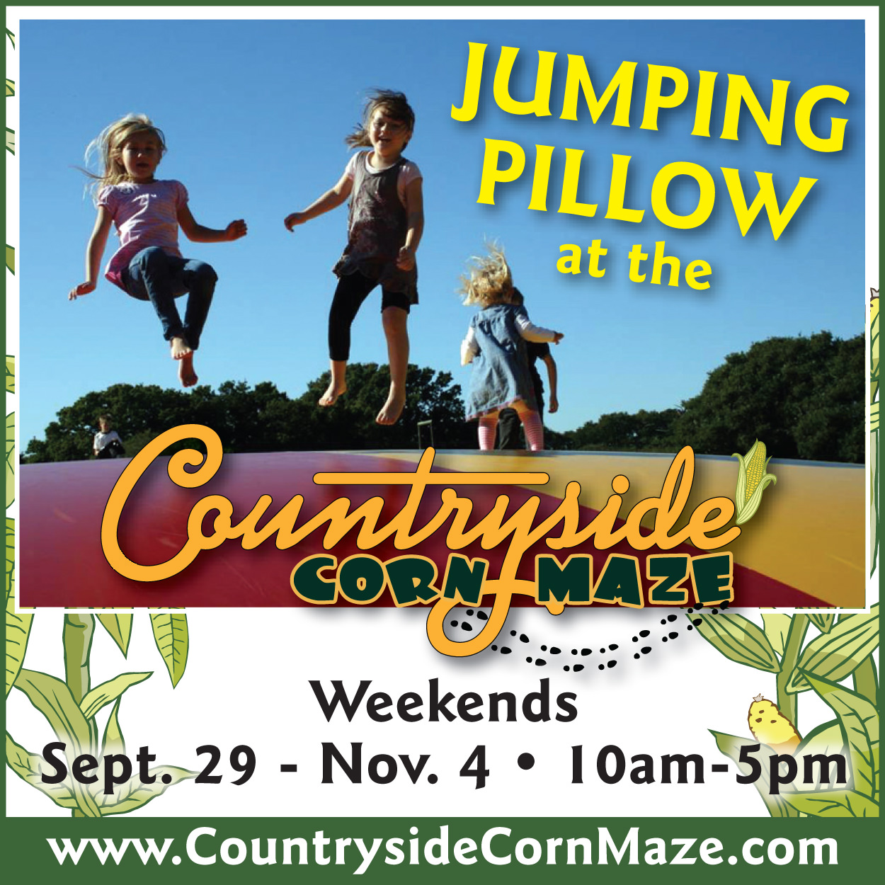 Jumping Pillow at Countryside Citrus